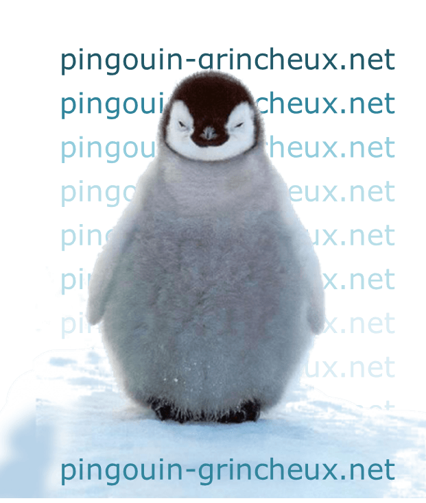 Attention,  Pingouin Méchant